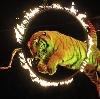 Цирки в Егорьевске